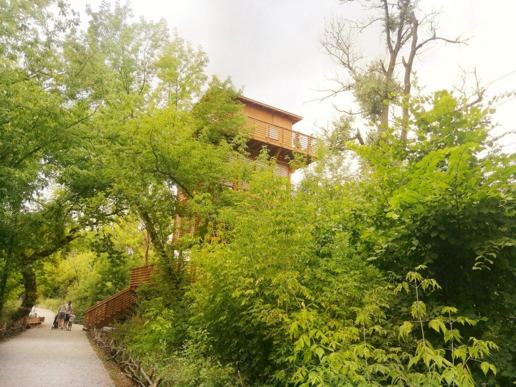pomiechówek park wkry pomiechówek spacer w koronach drzew