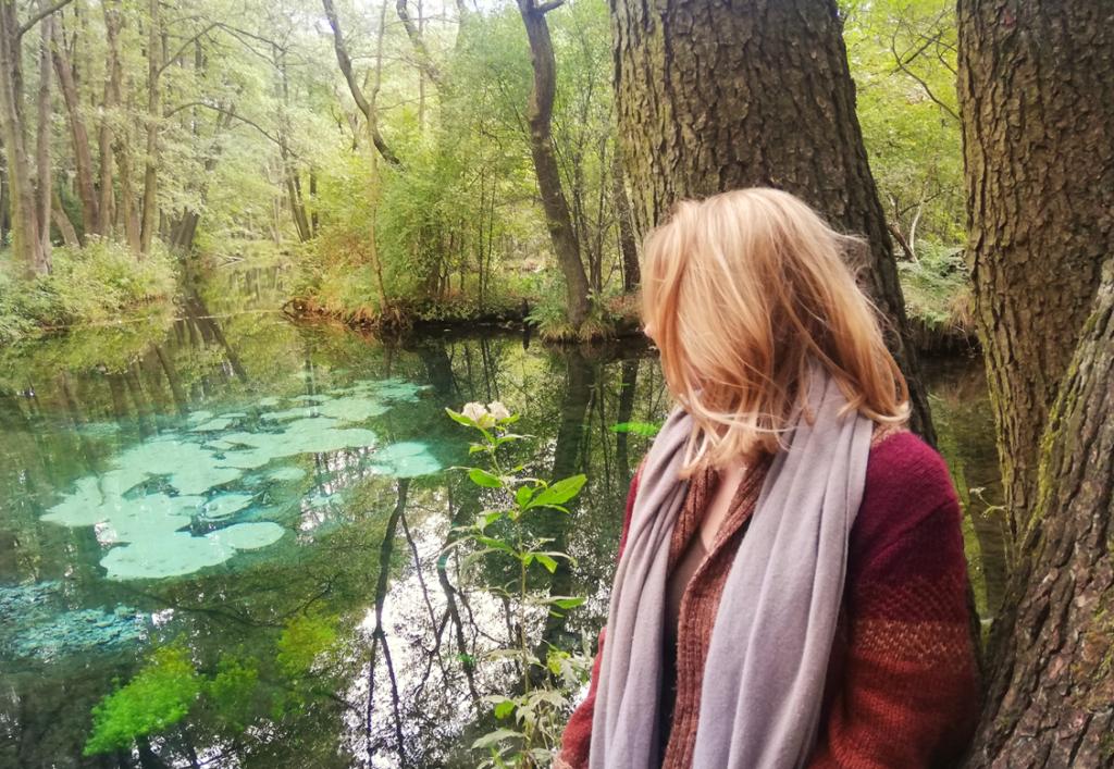 Rezerwat przyrody Niebieskie Źródła czy warto zobaczyć